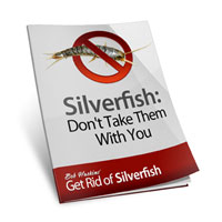 Silverfish: Don't Take Them With You